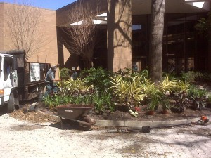 css-landscaping-projects (15)